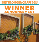 Best Craft Blogger Contest by FaveCrafts! WE WON!